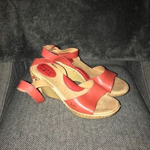 Coral Wedges